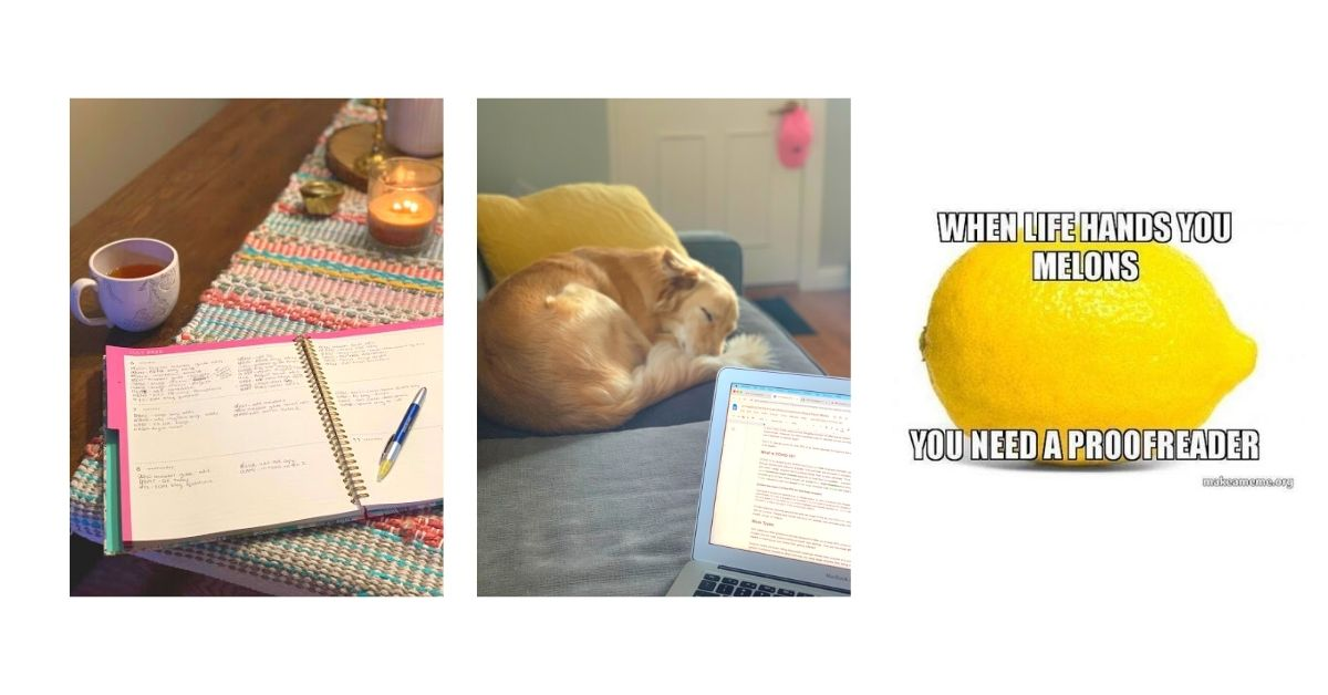 Heather Hobbs' Pictures + Memes: Planner, Laptop, Meme: When life gives you melons, you need a proofreader